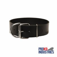 Extra Wide Leather Dog Collar for Professional Training