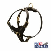Tracking Leather Dog Harness With Y-Chest Plate
