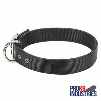 2 Ply Nylon Dog Collar