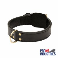 Training 2 Ply Leather Dog Collar