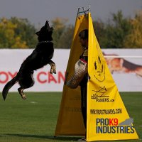 New High Quality Schutzhund blind - 7 foot blind - TE100
