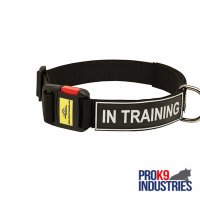 All Weather Nylon Dog Collar with ID Patches