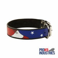 Dog Leather Collar With Handcrafted American Flag Painting