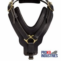 Padded Leather Dog Harness for Agitation Training