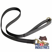 All Weather Nylon Dog Leash for Walking and Training Activities