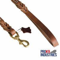Walking and Training Leather Dog Leash with Comfy Handle