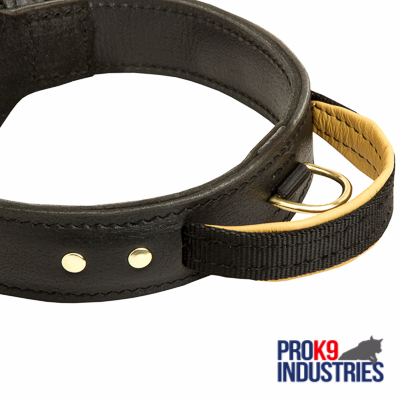 Extra Durable Leather Dog Collar with Handle for Attack Training