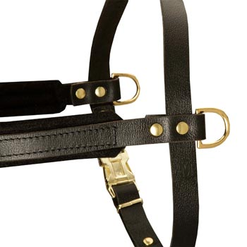 Training Pulling Dog Harness with Sewn-In Side D-Rings