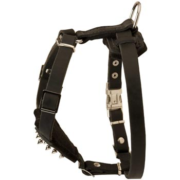 Dog Leather Harness for Puppy Walking and Training