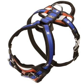 Leather SDog Harness with Handle Stitched to Back Plate