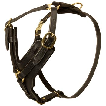 Comfortable Y-Shaped Leather Harness for Dog Attack  Training