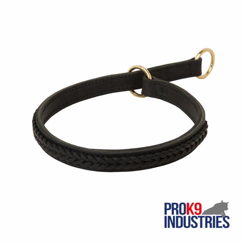 Gorgeous 2 Ply Leather Choke Dog Dog Breed Collar