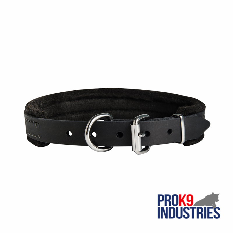 Padded Leather Dog Collar 25 mm for Dog Training - Click Image to Close