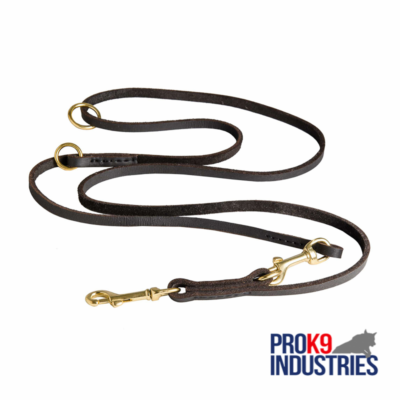 Multifunctional Leather Dog Leash for Walking and Training
