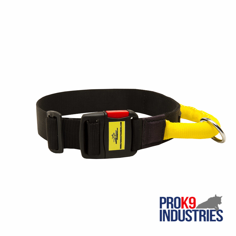 Gorgeous Wide Nylon Dog Collar With Quick Release Buckle and Handle