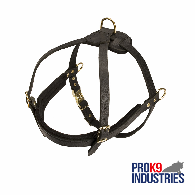 Leather Dog Harness for Tracking and Pulling