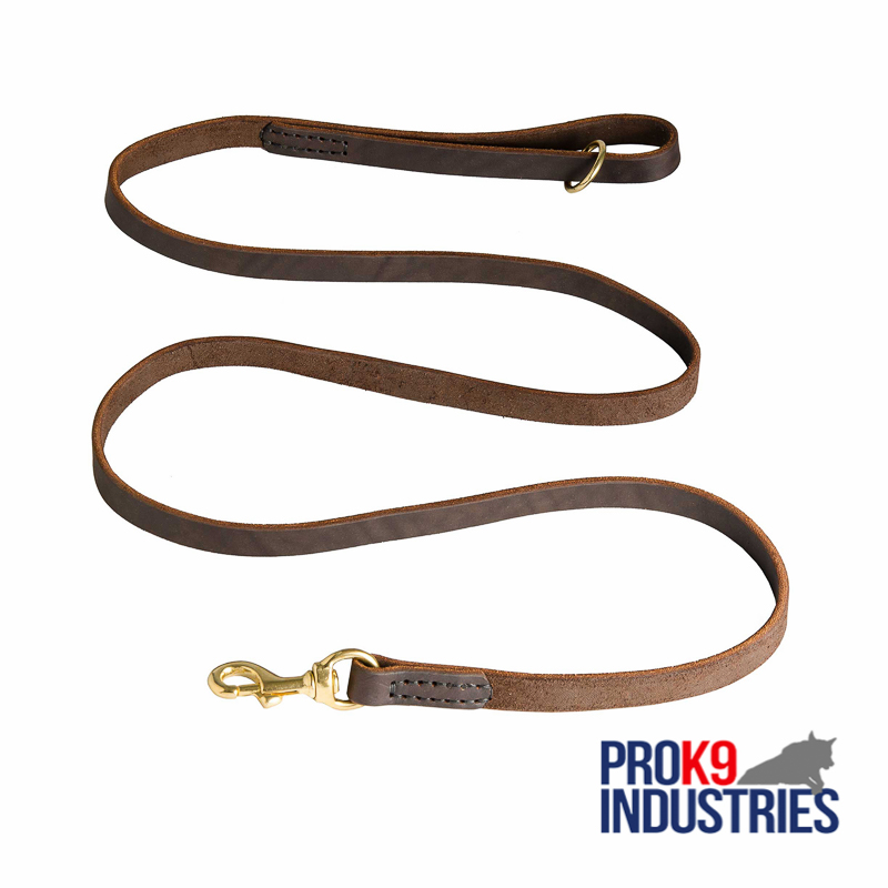 Stitched Leather Dog Leash for Training and Walking