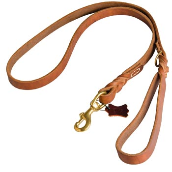 Canine Leather Leash for Dog