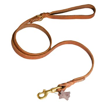 Training Leather Dog Leash with Handle