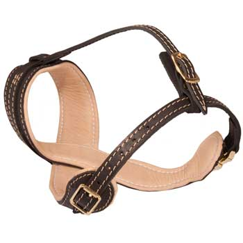 Dog Muzzle Leather Easy Adjustable with Quick Release Buckle